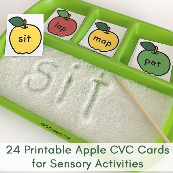 Apple CVC Word Cards Sensory Activity