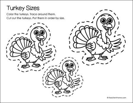 Turkey Sizes Page
